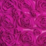 Rosa Rosa Fuchsia Chiffon Rosette Overlay from Napa Valley Linens