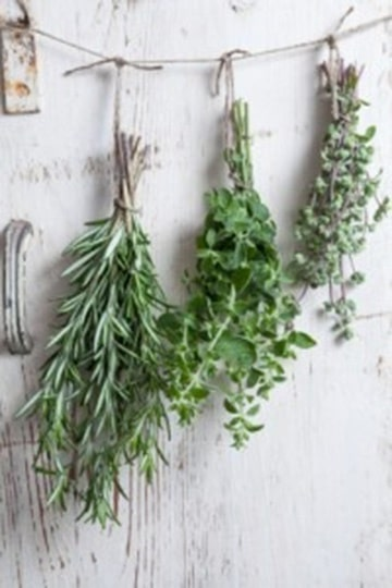 Hanging Bunches of Herbs   True Love Spell with Enchanting Practical Magic Wedding Inspiration