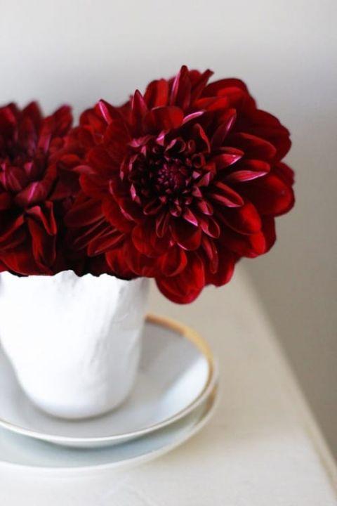 Crimson Dahlia Centerpiece