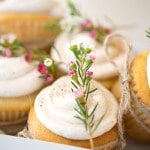 Eggnog Cupcakes | Maru PhotographyLet It Snow - Vintage Holiday Wedding