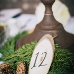 Evergreen and Wood Rustic Wedding Details|Lisa Mallory Photography
