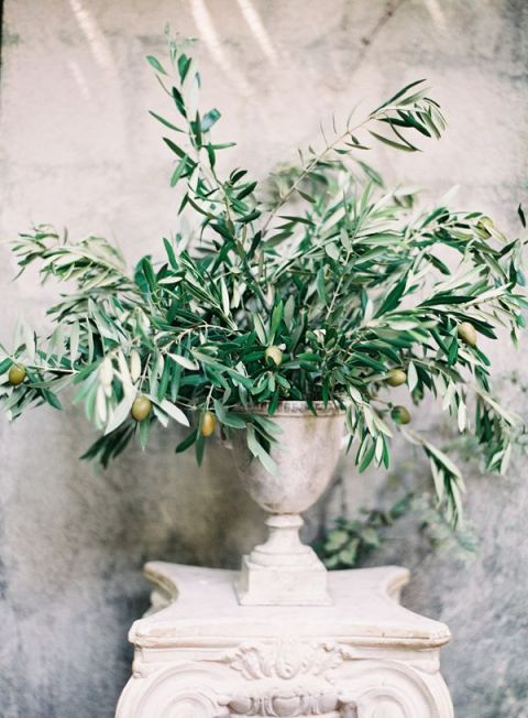 Olive Centerpiece | Rylee Hitchner Photography | See More: https://heyweddinglady.com/the-summer-isles-mediterranean-wedding-inspiration-in-olive-patina-and-jade/