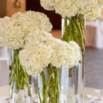 Bunches of Ivory Hydrangeas for a Simple, Elegant Centerpiece | Cariad Photography | See More: https://heyweddinglady.com/spring-green-southern-wedding-with-a-travel-theme/