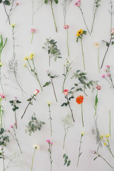 A Fresh and Fabulous Wall of Flowers! | Studio Amy Luna Photography | See More! http://heyweddinglady.com/peace-and-love-the-sweetest-60s-styled-shoot-ever/