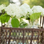 Hydrangeas Bloomed in Glass Vessels and Vintage Crates | J&J Photography | Classic Southern Ivory and Gold Wedding