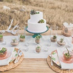 Vintage Pink Glass Plates and Silver Gray Succulents | As Ever Photography | Dreamy Desert Sunshine Wedding Inspiration