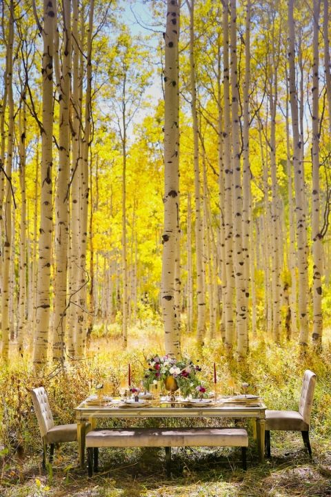 Chic Mirrored Table set in the Forest | Modern Glam Autumn Wedding in Fig and Gold | Pepper Nix Photography and Michelle Leo Events