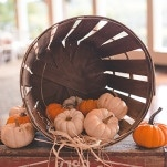 Fall Harvest Pumpkin Wedding Decor | Bit of Ivory Photography | Traditional Autumn Wedding in Eggplant and Orange