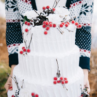 Winter Wedding Cake with Frosted Berries | Nicole Colwell Photography | https://heyweddinglady.com/festive-styled-wedding-in-the-winter-woods-with-a-corgi-in-a-holiday-sweater/