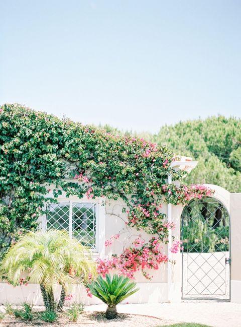 Bougainvillea Growing on the Villa | Brancoprata | Stylish White and Silver Destination Wedding in Portugal