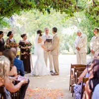A Grape Arbor Overhead and Colorful Petals Down the Aisle for a Summer Ceremony | Julie Nicole Photography | Colorful and Classic Vineyard Wedding in Northern California