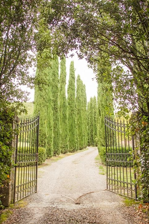 Wrought Iron Gates to the Castle | Mike Larson Photography | A Romantic Tuscan Bridal Shoot