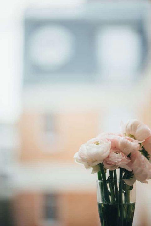 Blush Ranunculus | soundslikeyellowphotography