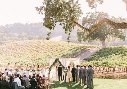 Elegant Winery Wedding Ceremony