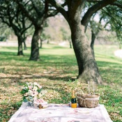 Sweet Picnic Proposal | Dana Fernandez Photography | The Most Romantic Styled Proposal in Blush and Gold