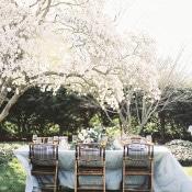 Elegant Head Table Set under a Blooming Cherry Tree | Krista A. Jones Fine Art Photography | Artistic French Blue Wedding