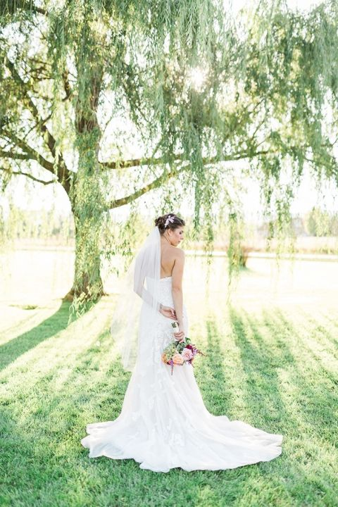 Weeping Willow Backyard Wedding Photos