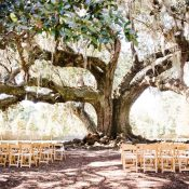 Tree of Life NOLA Wedding Ceremony